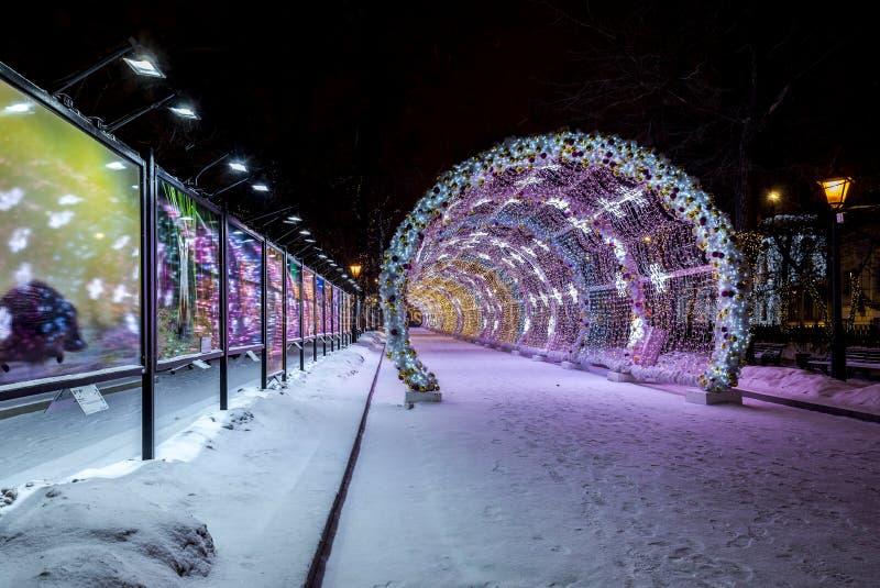 Belysninggarnering för nytt år och julav staden Ryssland, royaltyfria bilder