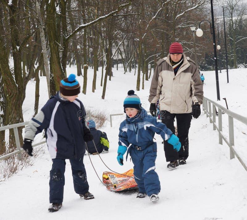 Bemanna genom att använda en sled i vintern arkivbilder