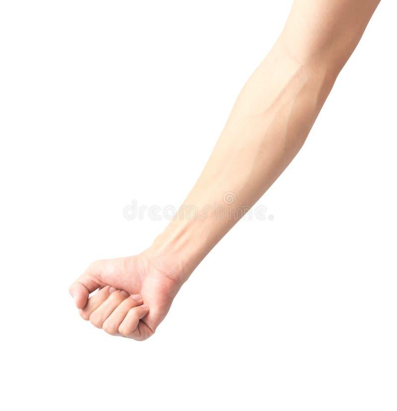 Bemannen Sie Arm mit Blutadern auf weißem Hintergrund, Gesundheitswesen und mir lizenzfreies stockbild