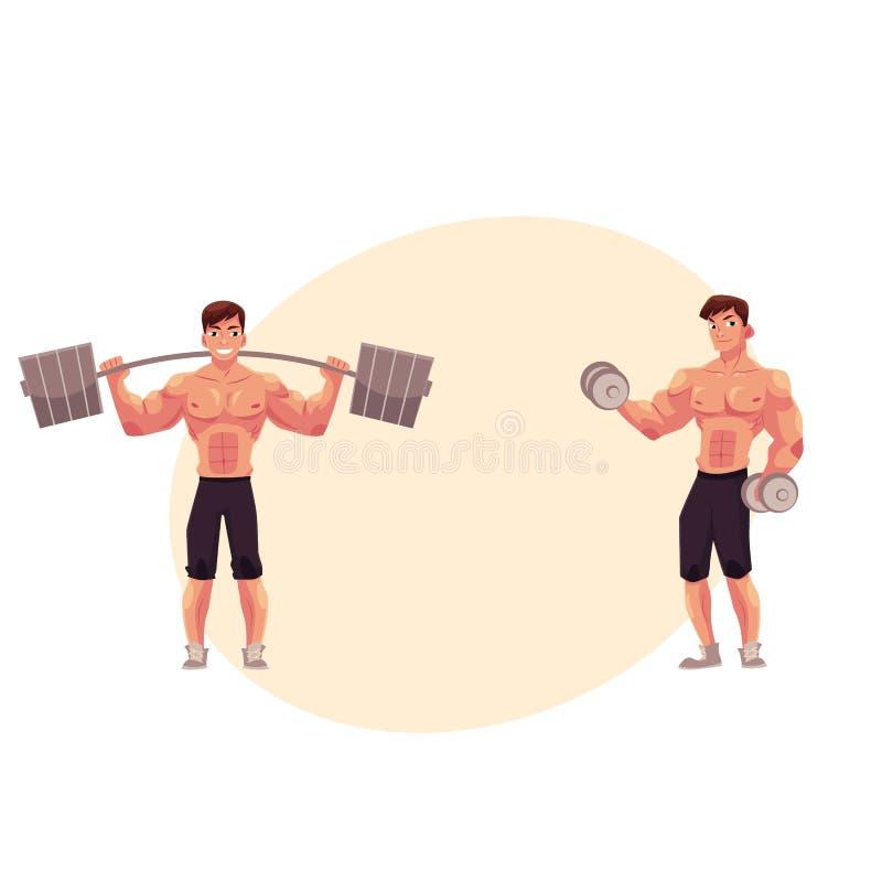 Bemannen Sie Bodybuilder, den Weightlifter, der ausarbeitet und mit Barbell und Dummkopf ausbilden stock abbildung