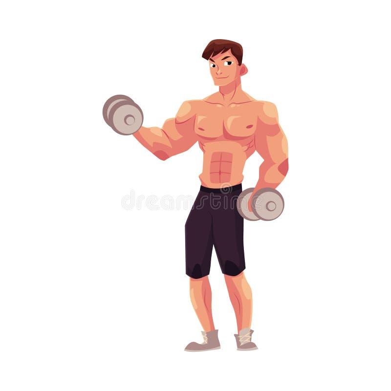 Bemannen Sie Bodybuilder, den Weightlifter, der das Bizepstraining tut und ausbilden bewaffnet mit Dummköpfen lizenzfreie abbildung