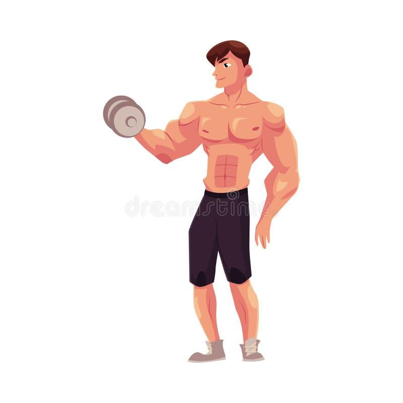 Bemannen Sie Bodybuilder, den Weightlifter, der das Bizepstraining tut und ausbilden bewaffnet mit Dummkopf lizenzfreie abbildung