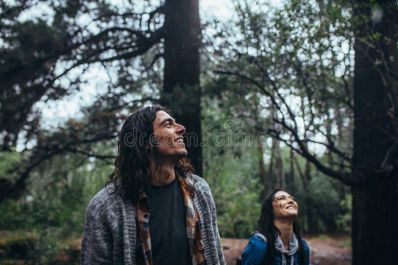 Bemannen Sie das Bewundern der Natur mit Frau an der Rückseite im Wald stockbild