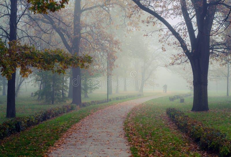 Bemannen Sie das Gehen in Park auf schönem nebelhaftem Herbstmorgen lizenzfreie stockbilder