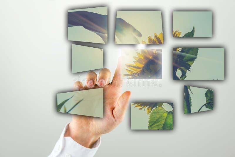 Bemannen Sie das Handeln einer Darstellung mit einem Sonnenblumenbild stockbild