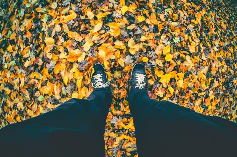 Bemannen Sie das Schießen seiner Füße bei der Stellung auf trockenem Herbstlaub im Park Fallnatur lizenzfreies stockfoto