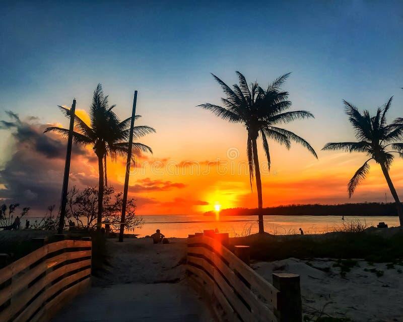 Bemannen Sie das Sitzen auf Strand während des Florida-Schlüsselsonnenuntergangsonnenuntergangs stockfoto