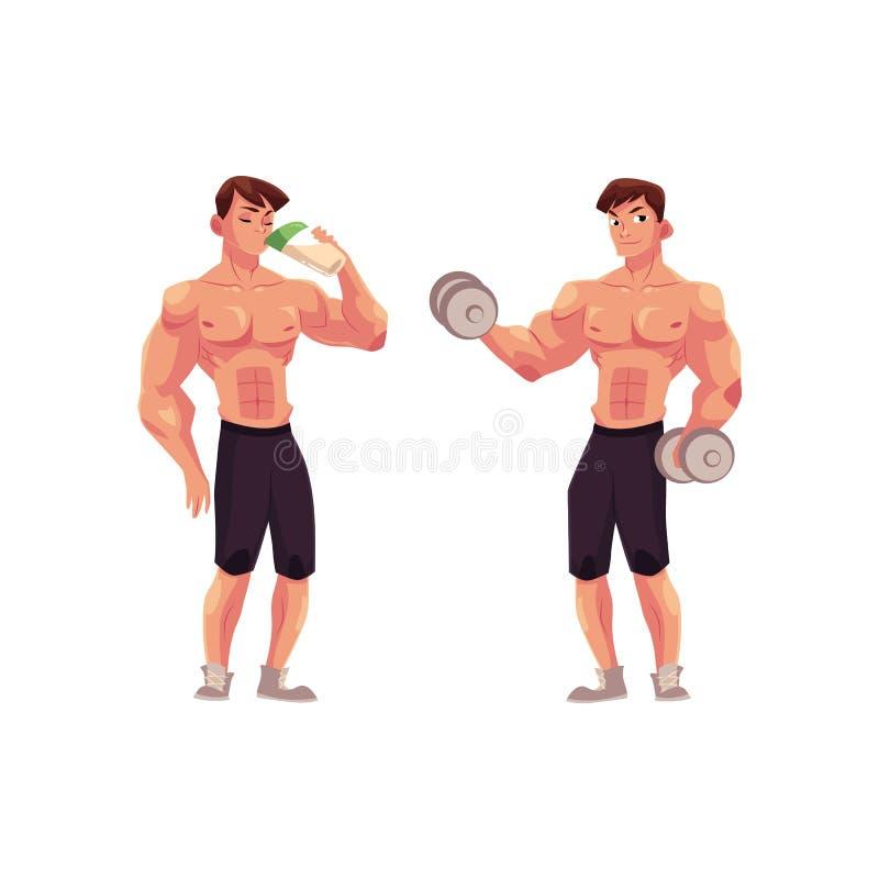 Bemannen Sie den Bodybuilder, der mit Dummköpfen und trinkendem Proteindrink ausarbeitet lizenzfreie abbildung