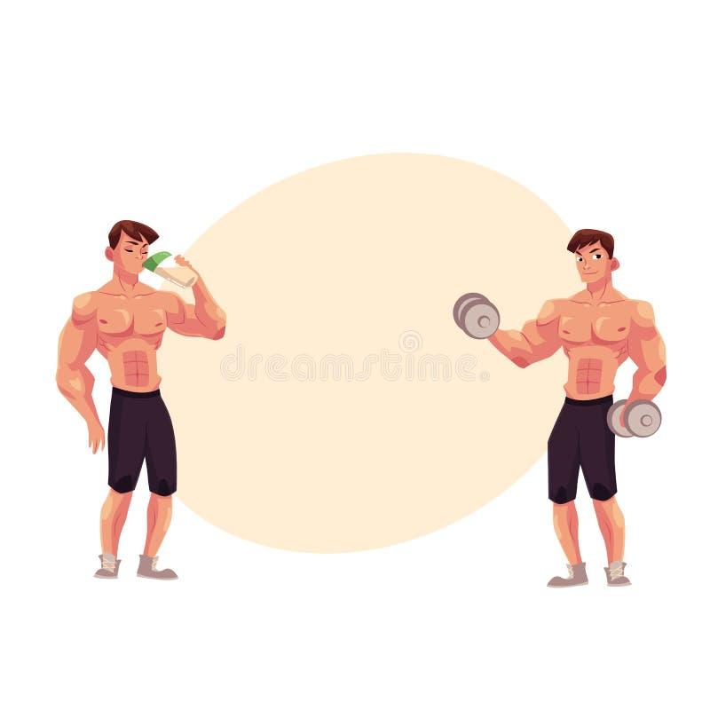 Bemannen Sie den Bodybuilder, der mit Dummköpfen und trinkendem Proteindrink ausarbeitet vektor abbildung