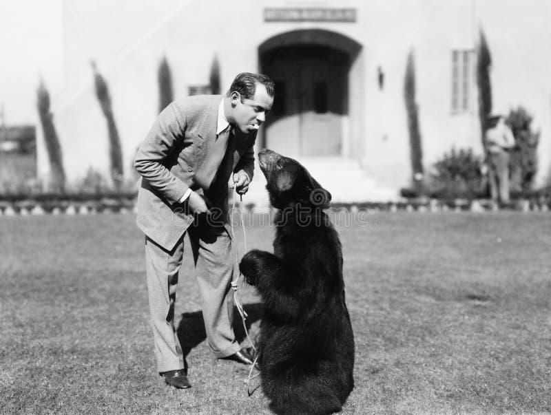 Bemannen Sie die Fütterung eines Bären, der auf seinem Rasen steht (alle dargestellten Personen sind nicht längeres lebendes und  lizenzfreie stockfotos