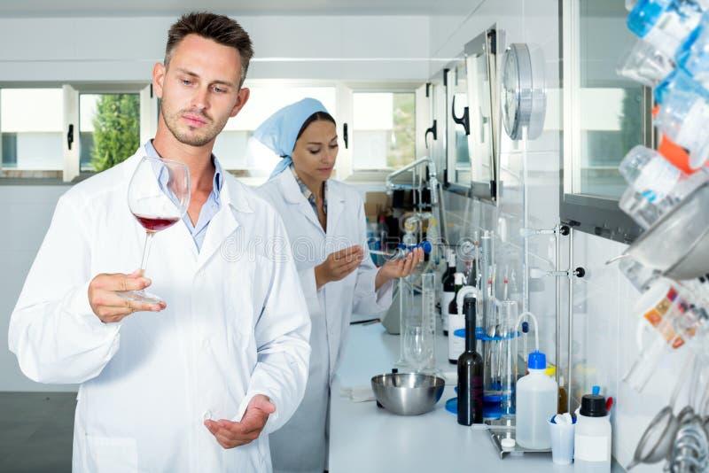 Bemannen Sie die Prüfung von Qualität des Weins im chemischen Labor stockfotos