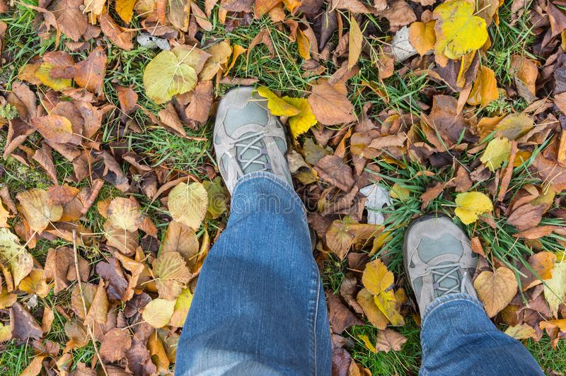 Bemannen Sie die tragende Jeans und Turnschuhe, die Schritt auf einem herbstlichen Boden tun lizenzfreie stockbilder