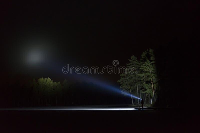Bemannen Sie stehendes im Freien nachts glänzend mit Taschenlampe herauf den Himmel und an den Bäumen im Wald stockfoto