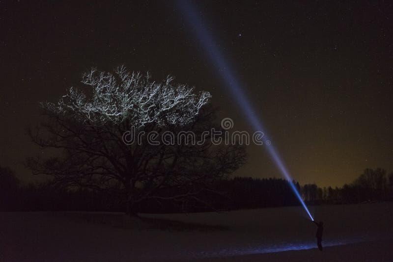 Bemannen Sie Stellung draußen nachts in der Winterlandschaft Schwedens Skandinavien, die mit Taschenlampe am Baum und am Himmel g lizenzfreie stockfotos