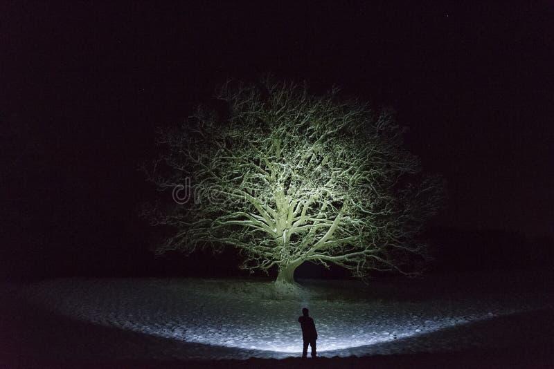 Bemannen Sie Stellung draußen nachts in der Winterlandschaft Schwedens Skandinavien, die mit Taschenlampe am Baum und am Himmel g stockbilder