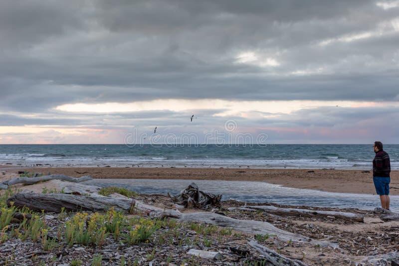 Bemannen Sie Stellung an einem Strand in Tasmanien bei Sonnenuntergang stockfoto