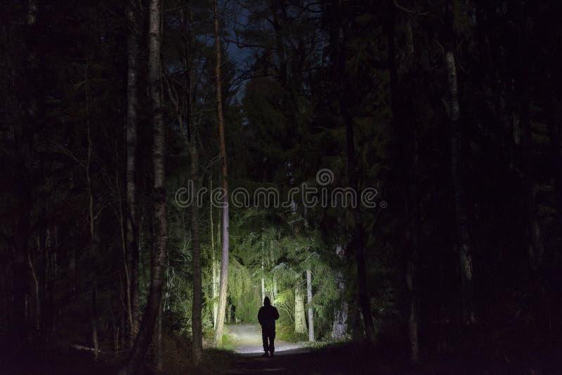 Bemannen Sie Stellung im dunklen Wald nachts mit Taschenlampe und Hoodie auf Kopf lizenzfreie stockbilder