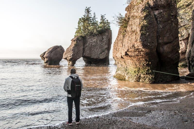 Bemannen Sie Stellung an Sonnenaufgang berühmter Fundy-Bucht New-Brunswick Kanada Flutwelle der Hopewell-Rockbildungen bei Ebbe g stockfotografie
