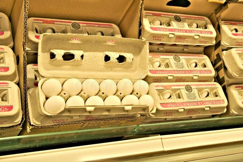 BEMIDJI, MN - 8 2019 FEB: Świezi kurczaków jajka w otwartym kartonie na supermarket półce obraz stock