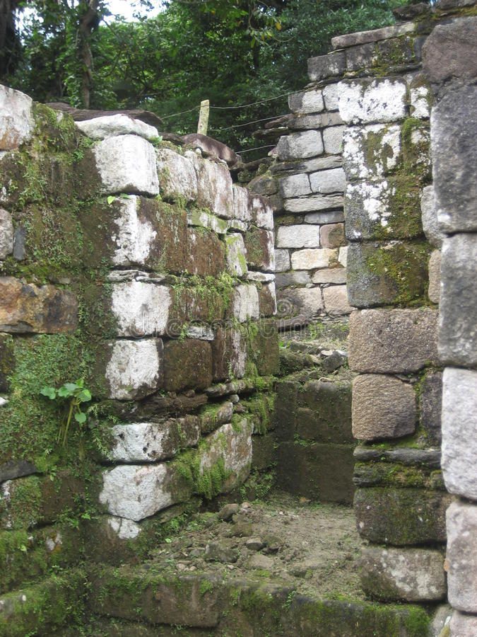 Bemoste rotsen royalty-vrije stock afbeeldingen