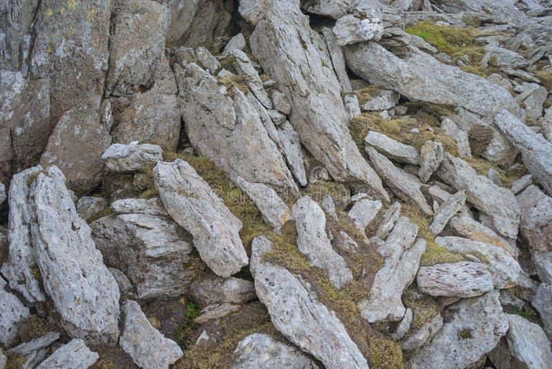 Bemoste rotsen aan een Welse bergkant stock afbeelding