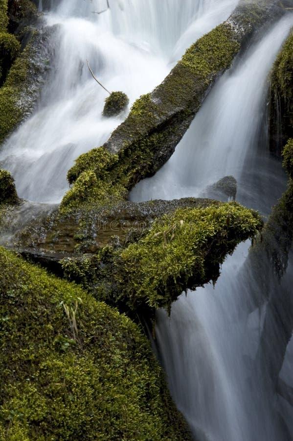 Bemoste rotsen en Dalingen op de Rivier van het Noordenumpqua royalty-vrije stock afbeelding