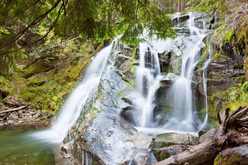 Bemoste Watervallen royalty-vrije stock foto's