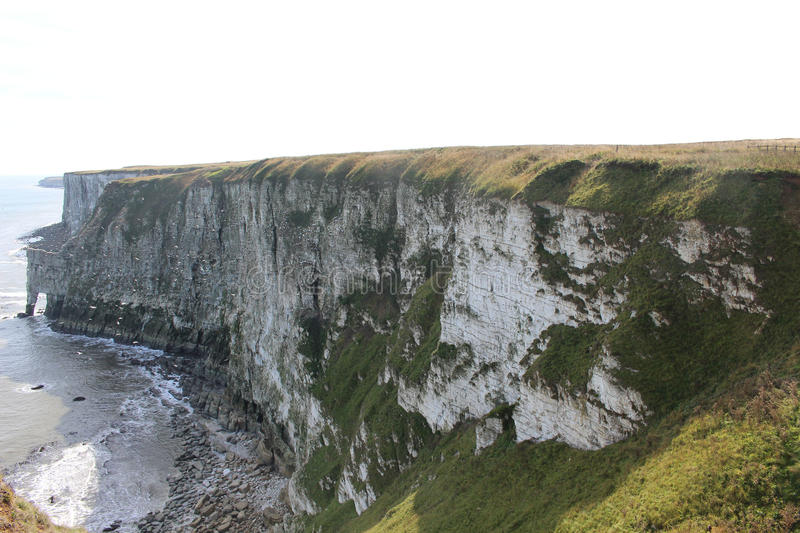 Bempton Cliffs nature reserve, landscape of Yorkshire Coast with seabirds circling by the cliff edge stock photo