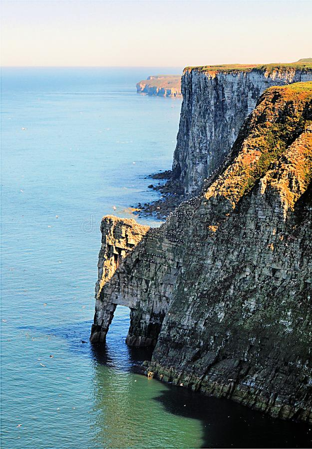 Free Bempton Cliffs On The Yorkshire Coast Stock Image - 160555051