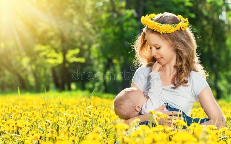 Bemuttern Sie die Fütterung ihres Babys in der Naturgrünwiese mit gelbem Fluss lizenzfreies stockfoto
