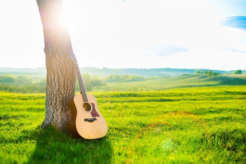 Benägenhet för akustisk gitarr mot stammen av ett träd mot en bakgrund av härligt landskap, en grön äng, vårkullar, blå sk arkivbilder