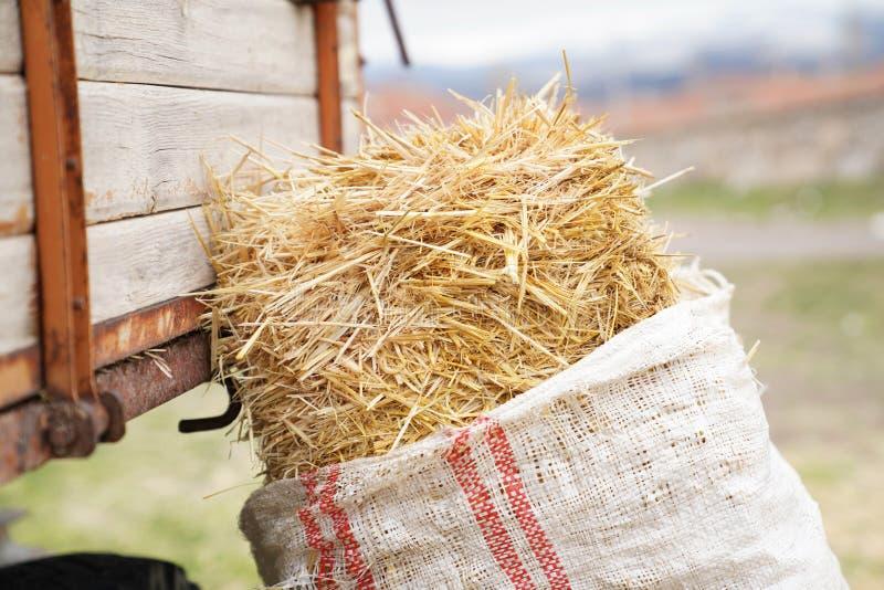 Benägenhet för höbal mot traktorsläpet arkivfoton