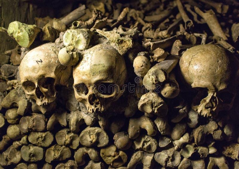 Ben och skallar i katakomberna av Paris royaltyfri foto
