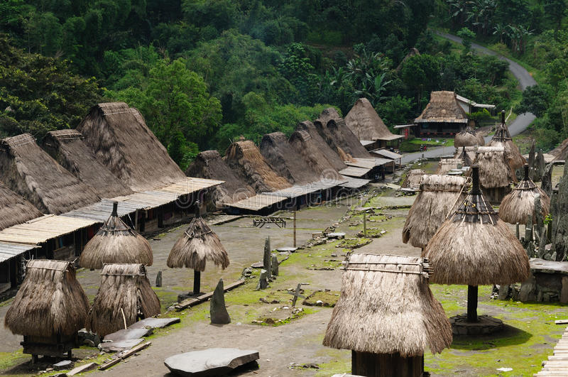 bena flores印度尼西亚村庄 图库摄影
