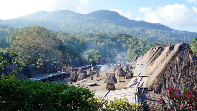 Bena uma vila tradicional com as cabanas da grama dos povos de Ngada imagem de stock