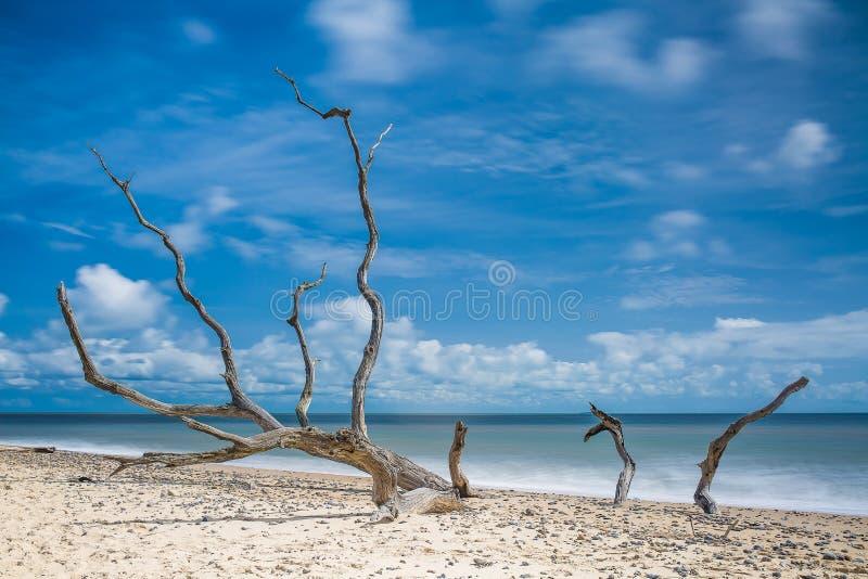 Benacre plaża, Suffolk, UK zdjęcia stock