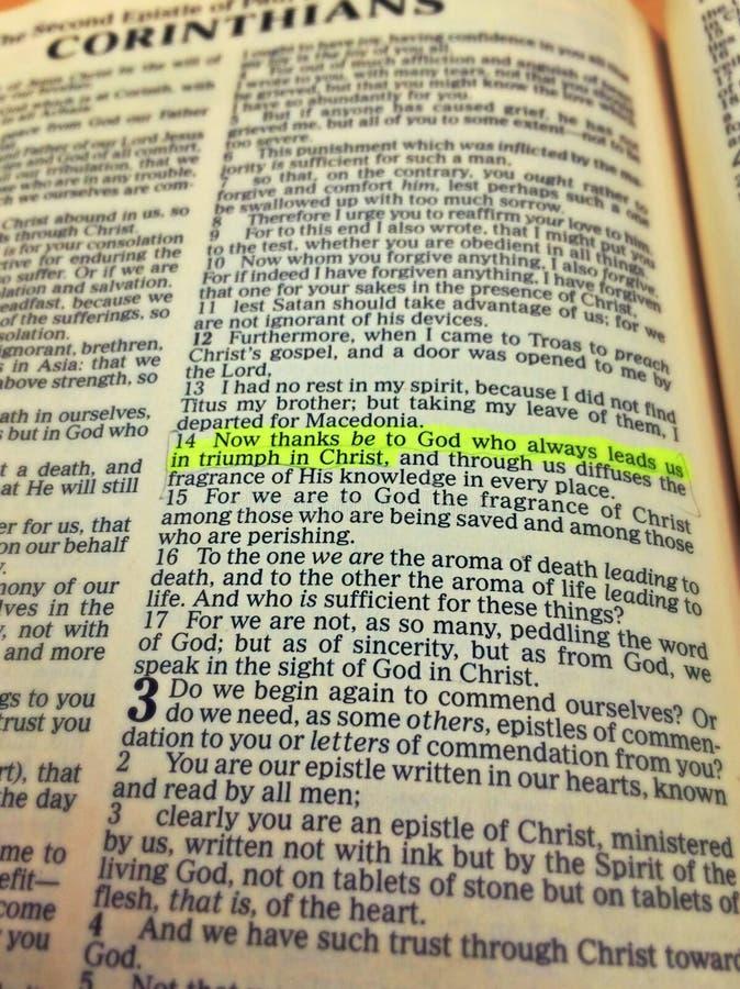 Benadrukt bijbelvers royalty-vrije stock foto
