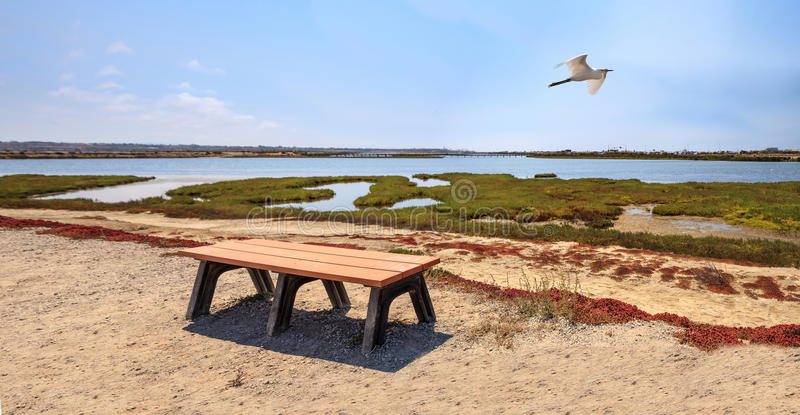 Bench обозревать мирное и спокойное болото Bolsa Chica стоковое фото