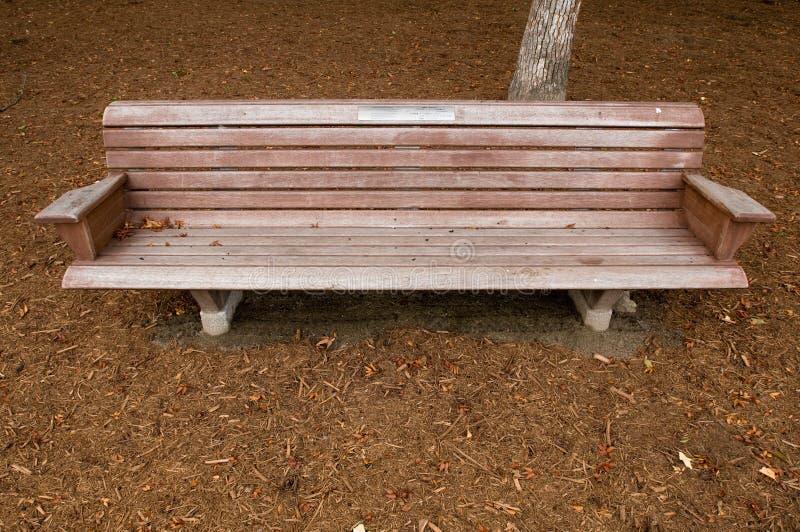 bench парк стоковая фотография rf