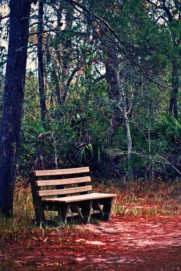Download Bench stock image. Image of outdoor, green, automn, background - 28614393