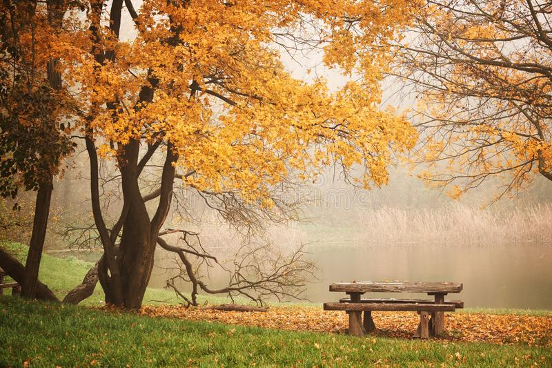 Bench autum park and lake.  stock photography