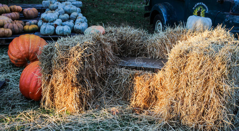 Bench among bales of hay and pumpkins royalty free stock photos