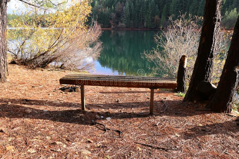 Bench in a Beautiful park royalty free stock images