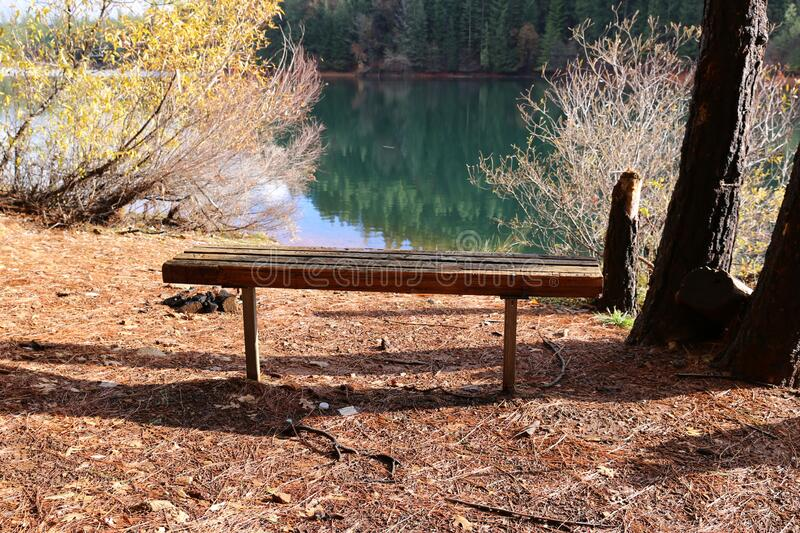 Bench in a Beautiful park royalty free stock image