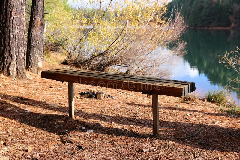 Bench in a Beautiful park royalty free stock photography