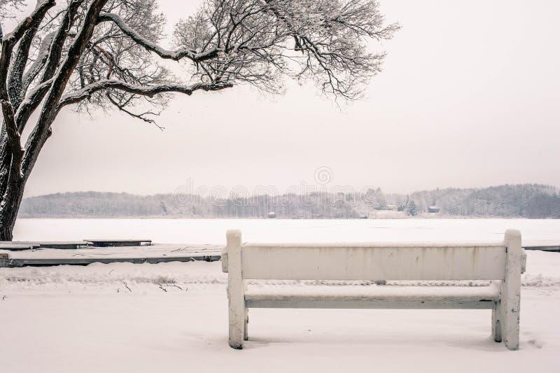 Bench, Cold, Fog, Foggy stock photo