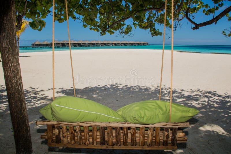 Bench com os descansos na praia tópica em Maldivas fotografia de stock royalty free