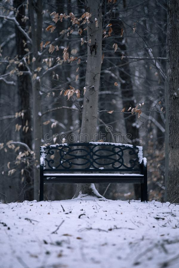 Bench covered in Snow stock image
