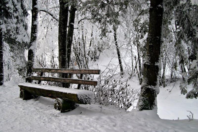 Bench en nieve fotos de archivo libres de regalías