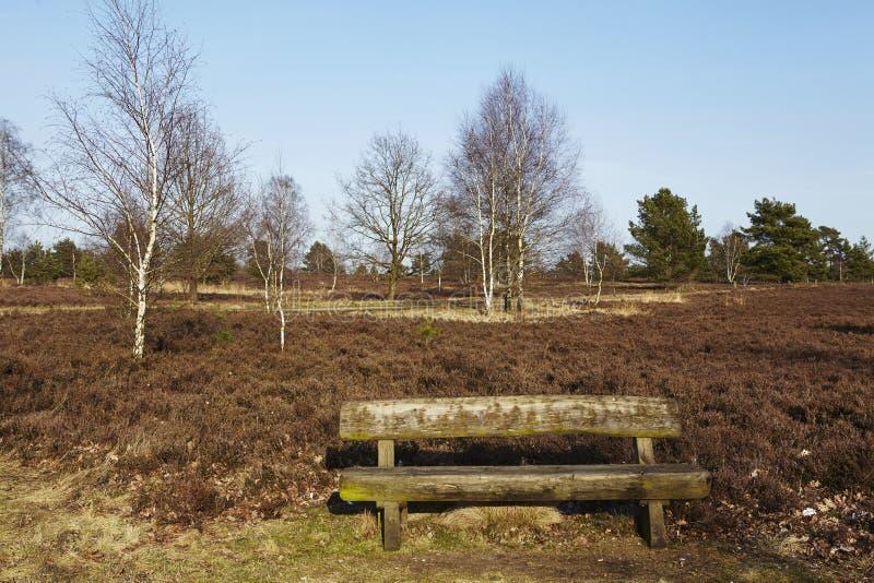 Bench en tierra en primavera imágenes de archivo libres de regalías